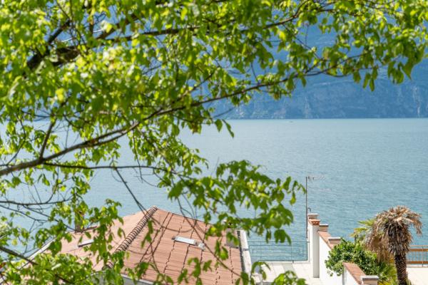 Vista lago B&B La Chicca Brenzone del Garda (Verona